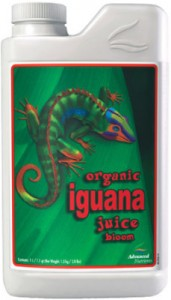 iguana-juice-bloom-lg-229x400