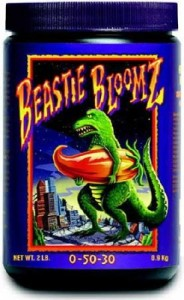beastie-bloomz-lg-246x400