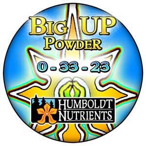 big-up-powder-lg