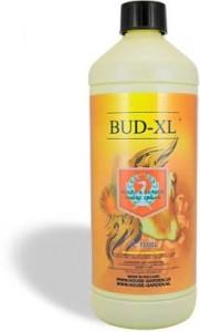 bud-xl-lg-242x400