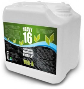 heavy16-veg-a-lg-377x400