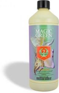 magic-green-lg-257x400