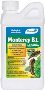 monterey-bt-lg-202x400