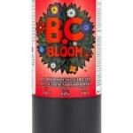 bc-bloom-254x400