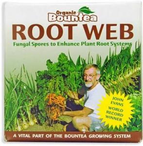 root-web-lg-392x400