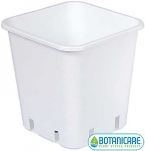 square-pots-lg-384x400