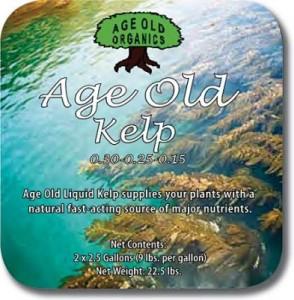 age-old-kelp-lg-393x400