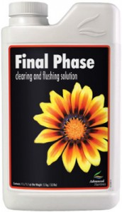 final-phase
