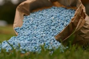 Fertilizer_1