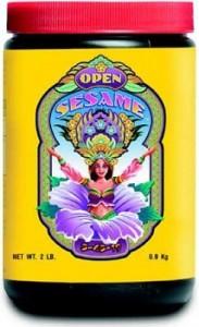 open-sesame-lg-245x400