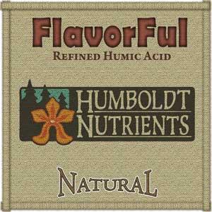 flavorful-lg