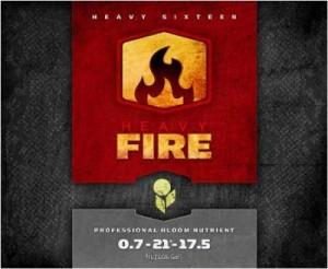 heavy-fire-lg-400x328