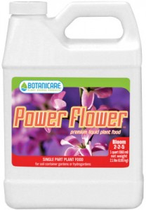 power-flower-278x400