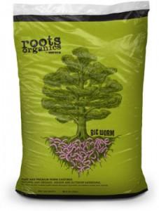 roots-big-worm-lg-303x400