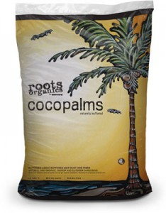 roots-coco-palms-lg-312x400