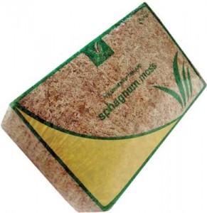 sphagnum-moss-lg-389x400