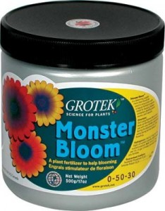 monster-bloom-lg-312x400