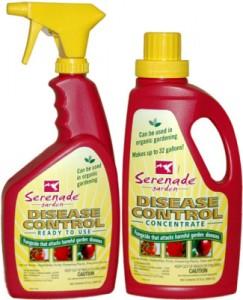 serenade-disease-control-325x400