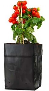 grow-bag-218x400