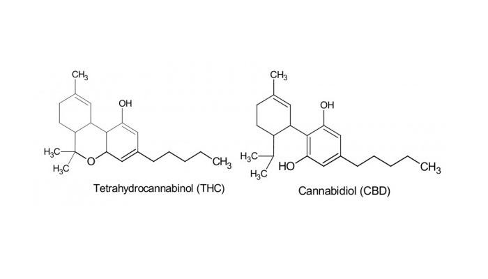 CBD-and-THC
